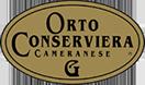 オルト グリーン・オリーブチェリニョーラ種  2900g